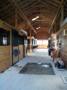 Clean Barn Aisle