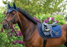 Horseware Newmarket Fashion Collection