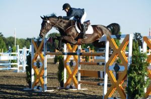 Girl Jumping Horse