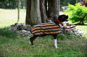 Eous Patterned Fleece Dog Coat
