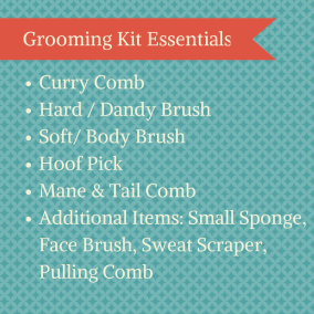Grooming Kit Essentials
