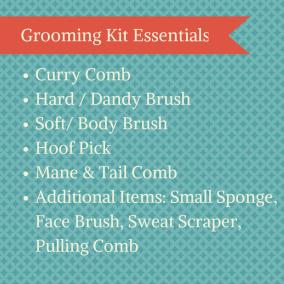 Grooming Kit Essentials