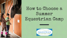 How to Choose a Summer Horse Camp